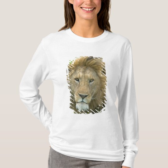 Lion Male Portrait, East Africa, Tanzania, T-Shirt