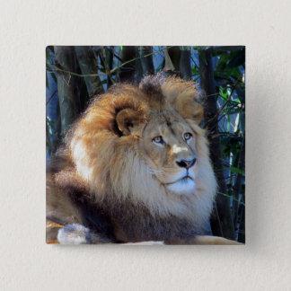 lion mane pinback button