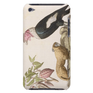 Lion monkey and condor, native to Chile or Ecuador Barely There iPod Case