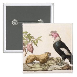 Lion monkey and condor, native to Chile or Ecuador Button