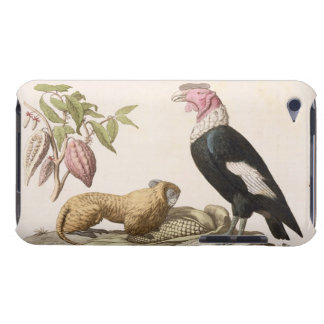 Lion monkey and condor, native to Chile or Ecuador Case-Mate iPod Touch Case
