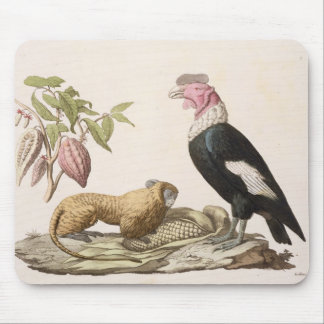 Lion monkey and condor, native to Chile or Ecuador Mouse Pad