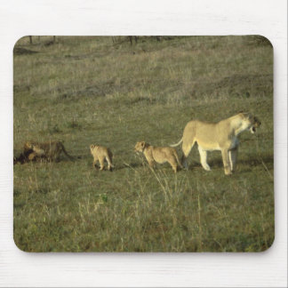 LION MOTHER AND CUBS MOUSE PAD