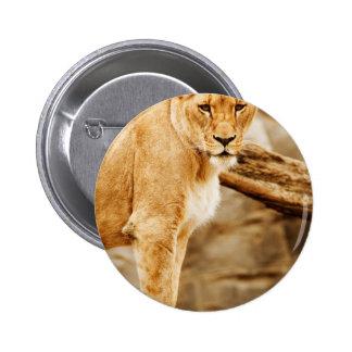 LION MOTHER PINBACK BUTTON