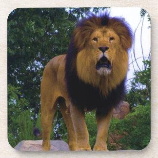 Lion on a Rock Beverage Coaster