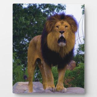 Lion on a Rock Plaque