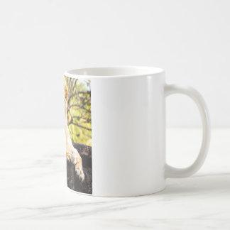 Lion on the Rocks Coffee Mug