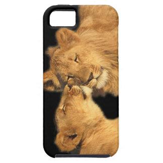 Lion Pair iPhone5 Case
