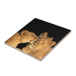 Lion Pair Tile (or make into keepsake box)