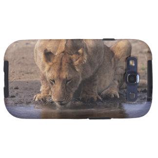 Lion (Panthera leo) at waterhole, Masai Mara Samsung Galaxy SIII Cases
