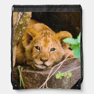 Lion (Panthera Leo) Cub In Cave, Maasai Mara Drawstring Backpack