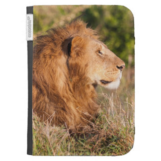 Lion (Panthera Leo) Maasai Mara, Kenya, Africa Kindle 3 Cases