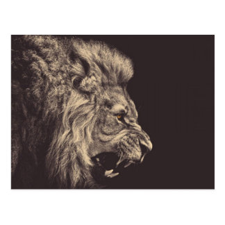 lion pencil art lion roar black and white postcard