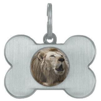 Lion Pet Name Tags