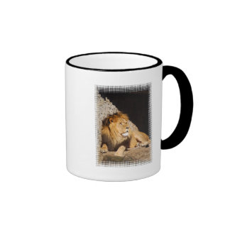 Lion Photo Coffee Mug