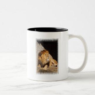 Lion Photo Coffee Mug.