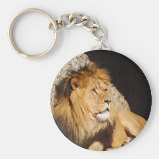 Lion Photo Keychain