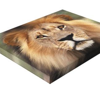 Lion Photograph Canvas Print