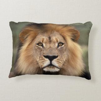 Lion Photograph Decorative Pillow