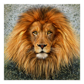 Lion Photograph Paint Art image Poster