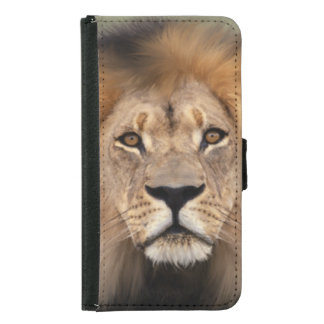 Lion Photograph Wallet Phone Case For Samsung Galaxy S5
