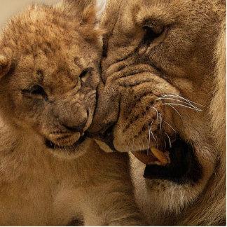 Lion Photo Cutouts