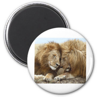 lion pic 2 inch round magnet