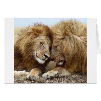 lion pic card