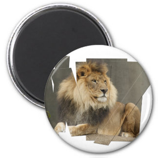 LION PIECES - PHOTO CUTUP AND REARRANGED MAGNET