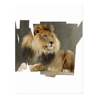 LION PIECES - PHOTO CUTUP AND REARRANGED POSTCARD