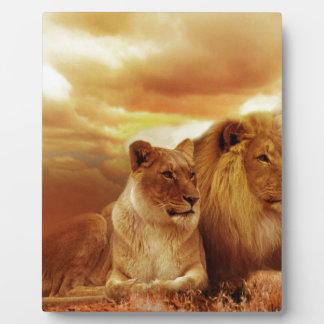 Lion Display Plaques