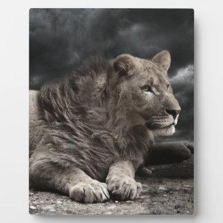 Lion Photo Plaque