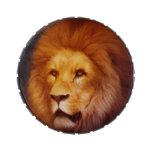 Lion portrait jelly belly tin