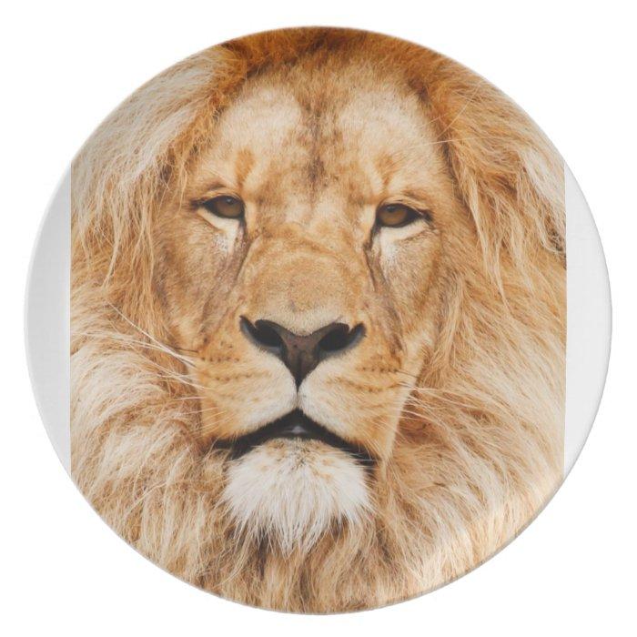 Lion Portrait Melamine Plate