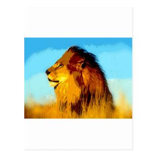 Lion Portrait Post Cards