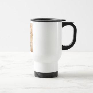Lion Pride Coffee Mugs
