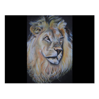 Lion Products - King of the Beasts! Post Cards