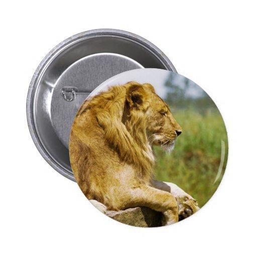 Lion Profile Button