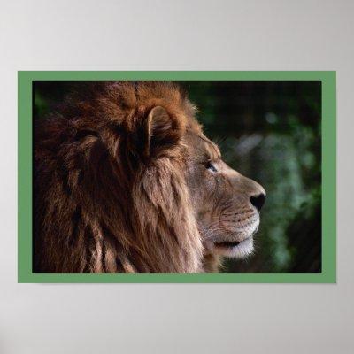 le sphinx ou l'inertie des archéologues Lion_profile_poster-p228356078467258364t5ta_400