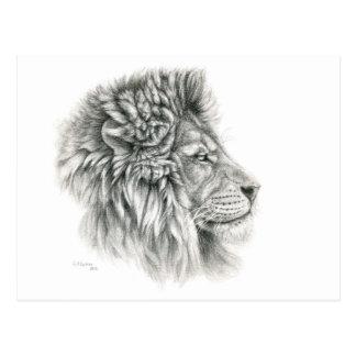 Lion Profiles G044 by schukina Postcard