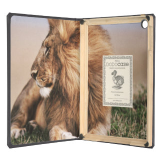 Lion resting in grass iPad air cases