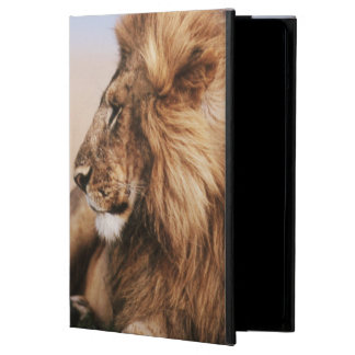 Lion resting in grass case for iPad air