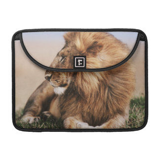 Lion resting in grass sleeve for MacBooks
