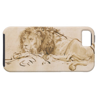 Lion Resting (pen and ink on paper) iPhone SE/5/5s Case