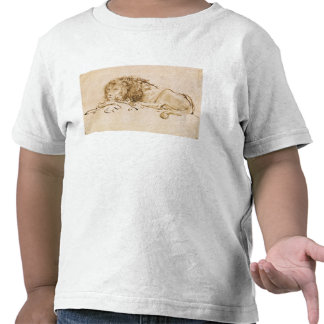 Lion Resting (pen and ink on paper) T Shirts