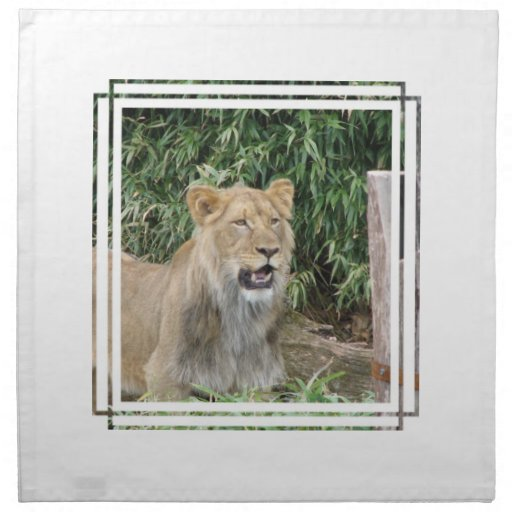 Lion  Roar  Set of Four Napkins