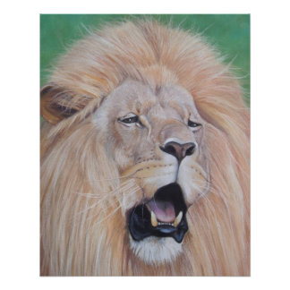 lion roaring big cat wildlife realist art poster