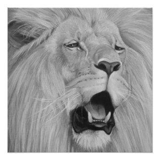 lion roaring big cat wildlife realist art poster