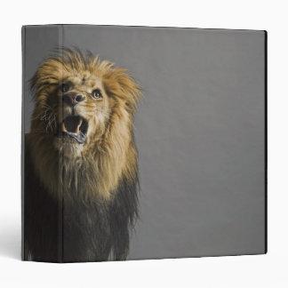 Lion roaring binder