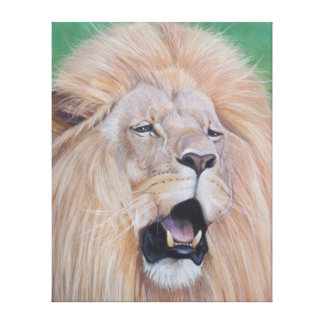 Lion roaring wildlife realist art Canvas Print